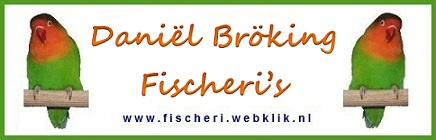 Daniel_Broking_Fischeribreeder website